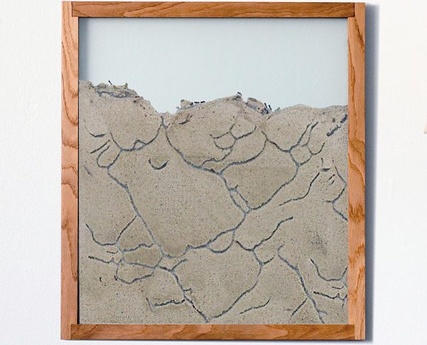 oak natural wood frame designer ant farm