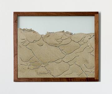 walnut natural wood frame ant farm landscape