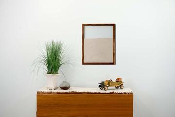 Wall Colony Designer Ant Farm Walnut Frame