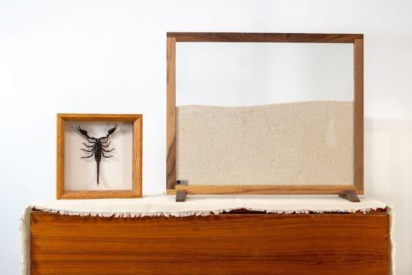Desktop Decoration Ant Farm with Stand Landscape
