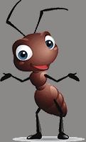 Wall Colony ant farms